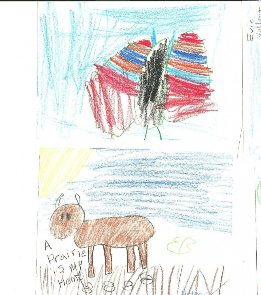 Neal Smith National Wildlife Refuge Children's Art