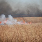 Neal Smith National Wildlife Refuge Prairie Fires